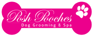 Dog Grooming Northampton - Dog Grooming Northamptonshire